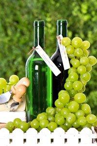 Bioweine sind gesünder als normale Weine.